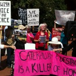 Palestinian Call for Boycott, Divestment, and Sanctions (BDS)
