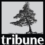 News Logo - Jack Pine Tribune